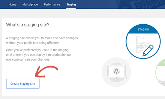 Create staging site on Bluehost