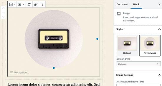 Image block settings in WordPress 5.3