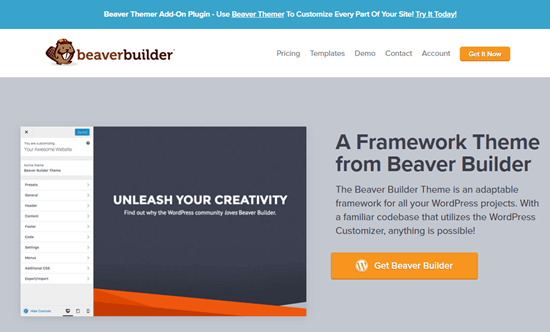 The Beaver Builder theme's website