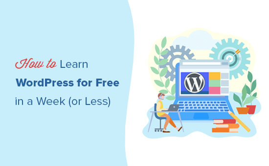 Cara mudah belajar WordPress gratis dalam satu minggu