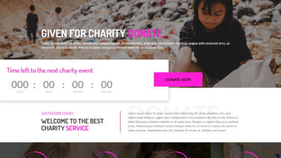 Divi's Charity Funding layout