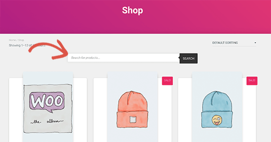Product search displayed on a page