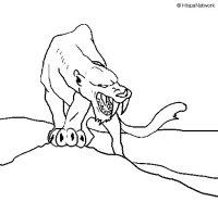 Disegno di Tigre con affilati canini da Colorare