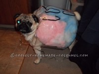 10 Hilarious Dog Costumes You Can Make On a Budget