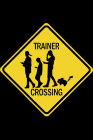 Pokemon Go Trainer Crossing Shirts