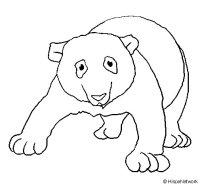 Dibujo de Oso panda 1 para Colorear - Dibujos.net