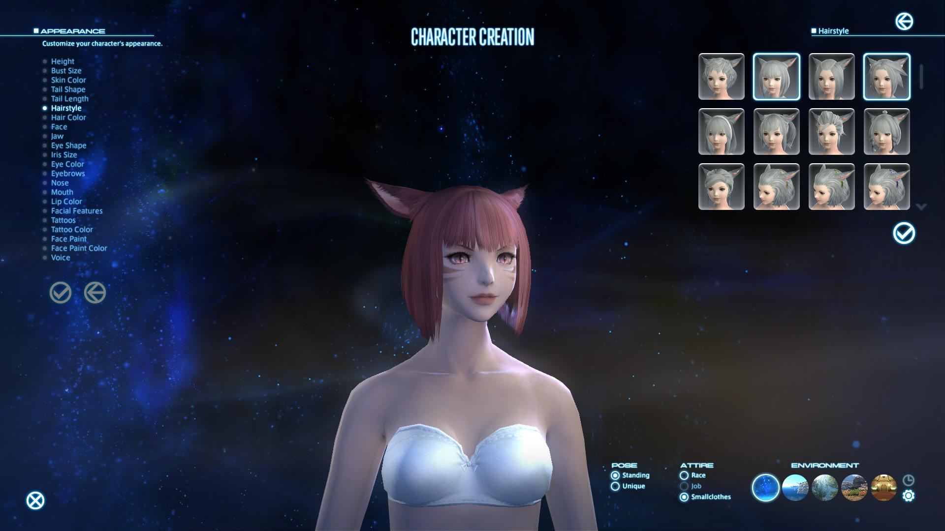 Final Fantasy XIV A Realm Reborn Wont Have A Character
