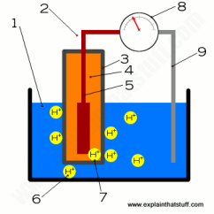 Labelled Diagram Of Ph Meter Fender Guitar Wiring How Do Meters Work Measuring Acidity Showing A Works