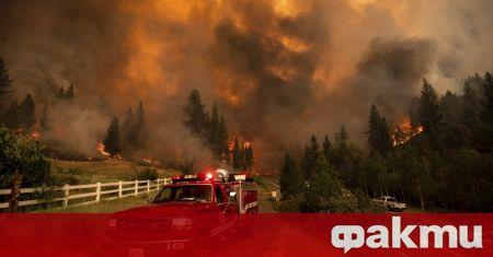 Сицилия гори, курортът е изгорял – ᐉ Новини Fakti.bg – Свет