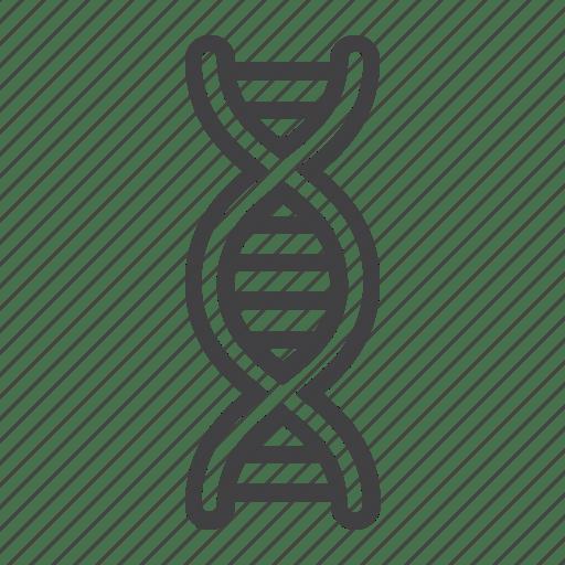 Biology, chromosome, dna, education, genetic, health