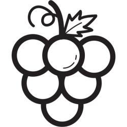 Fruit fruits grape icon Free download on Iconfinder