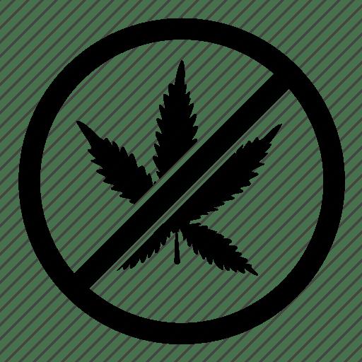 prohibited by nikita kozin