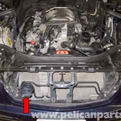 Mercedes E500 Wiring Diagram Deciduous Forest Food Chain Benz W211 High And Low Tone Horns Replacement