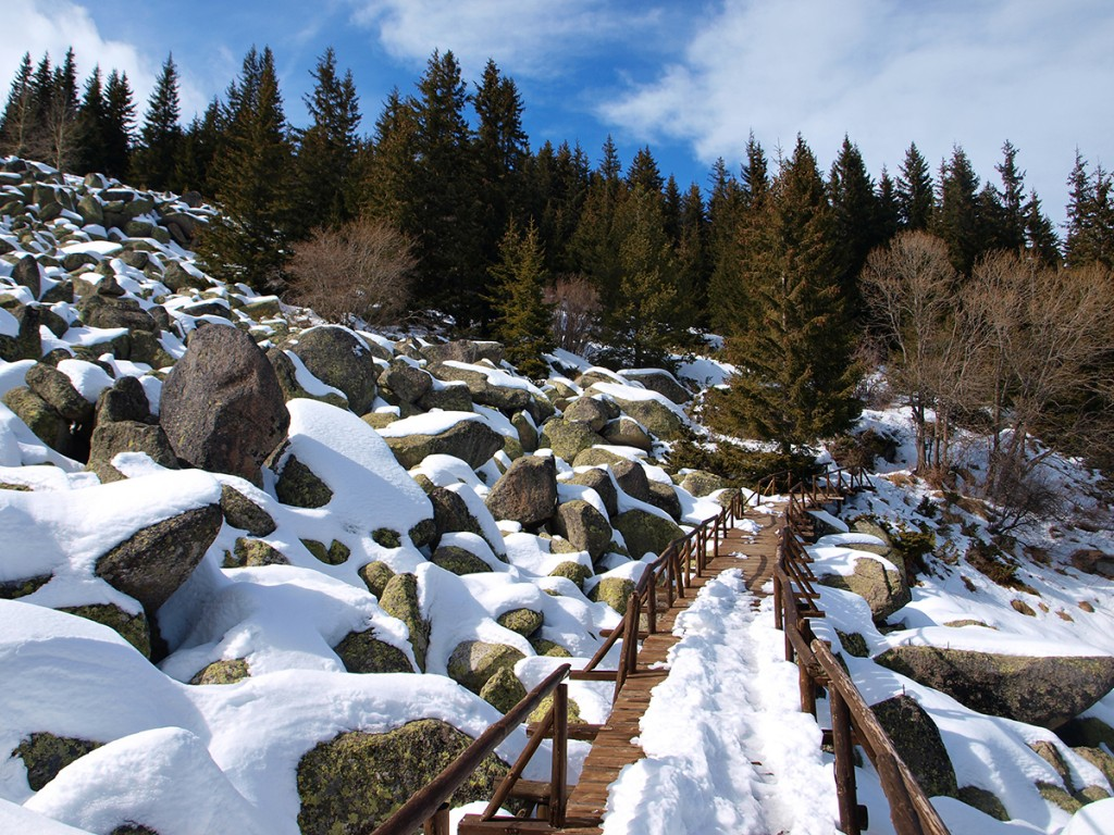 Vitosha mountain bulgaria