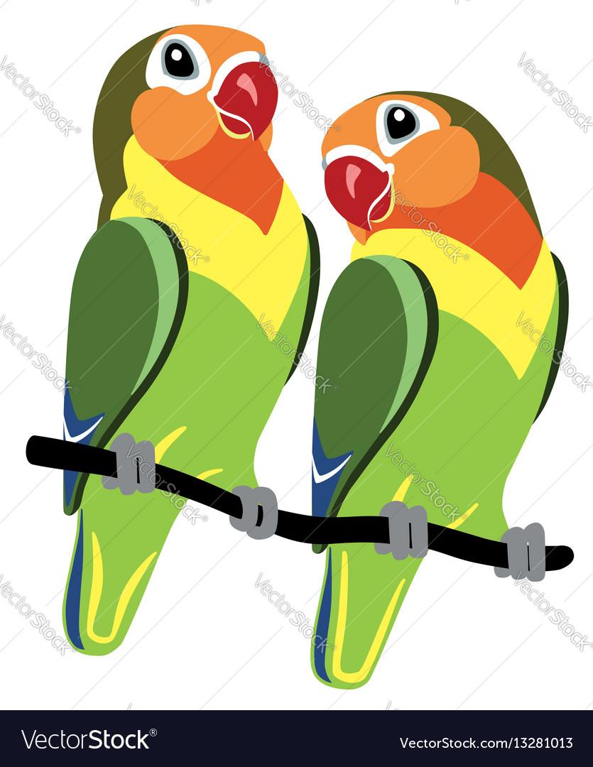 cartoon fischer lovebirds