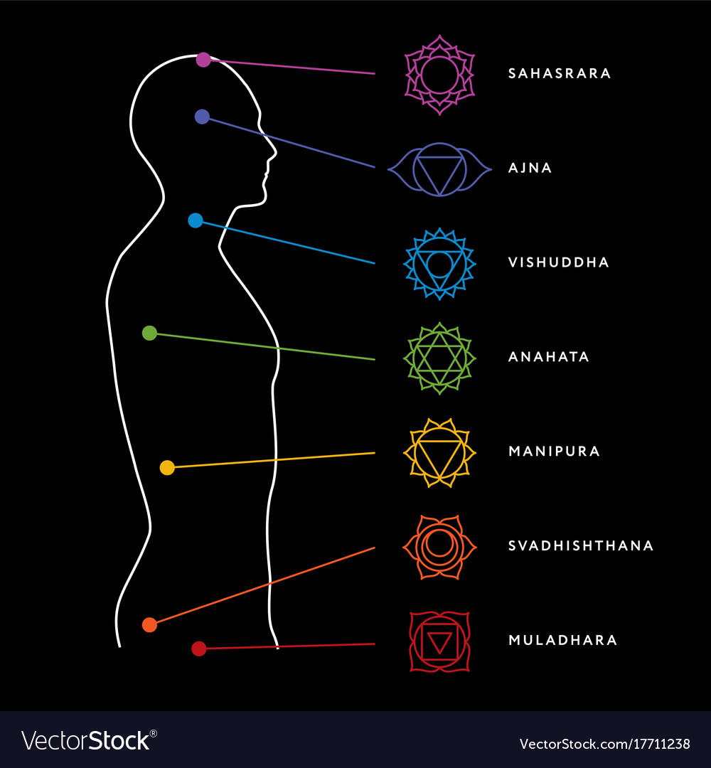 hight resolution of chakra system of human body vector image