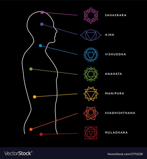 small resolution of chakra system of human body vector image
