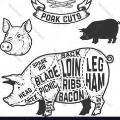 Pork Butcher Cuts Diagram Tel Tach Wiring Design Element For Vector Image