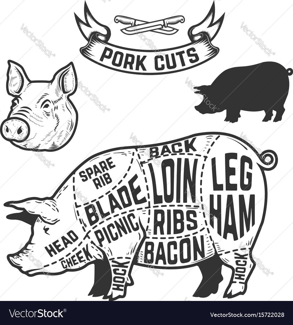 pig cuts diagram health tongue pork butcher design element for vector image