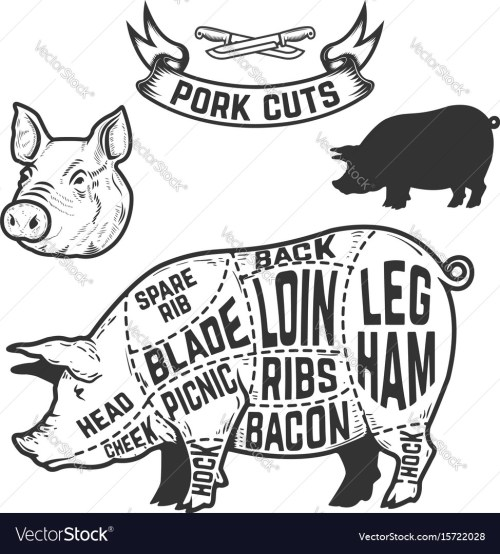 small resolution of pork cuts butcher diagram design element for vector image pork butcher diagram pig butcher diagram