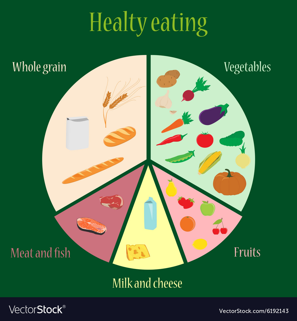 medium resolution of healthy eating chart vector image