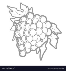 Outline bunch grapes in simple style Royalty Free Vector