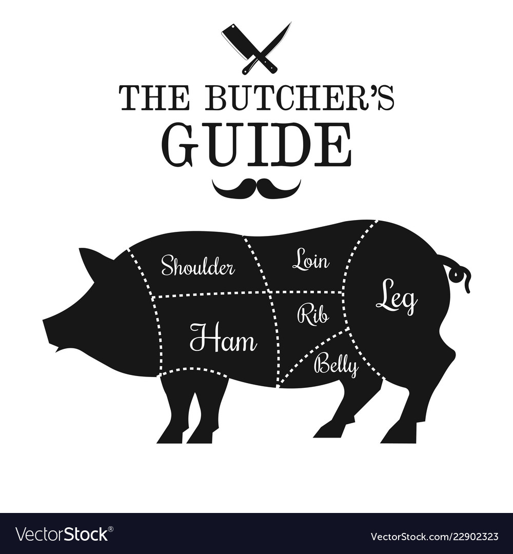pig cuts diagram 1980 cb750 wiring pork meat cut lines poster guide for vector image