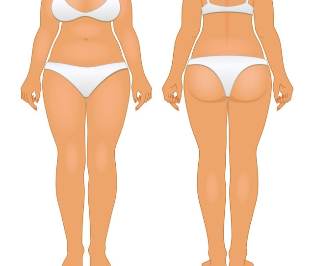 Fat And Thin Woman Big White Girl Vector Image