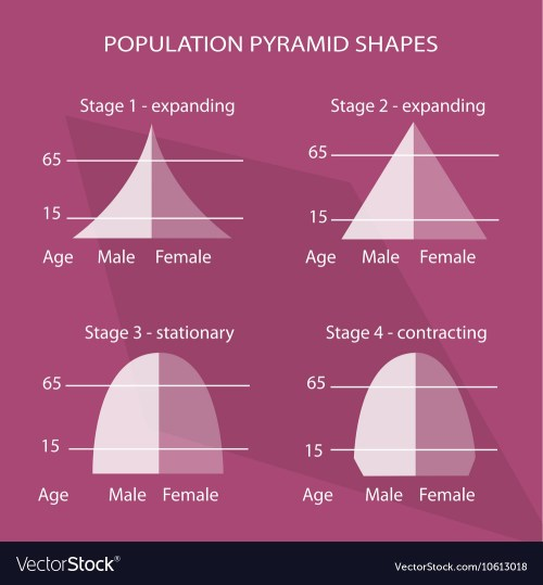 small resolution of four different types of population pyramids charts vector image