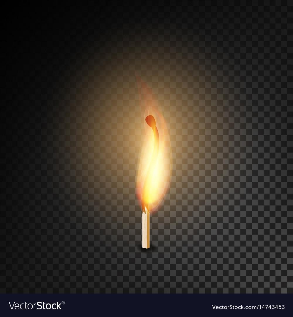 realistic burning match burning