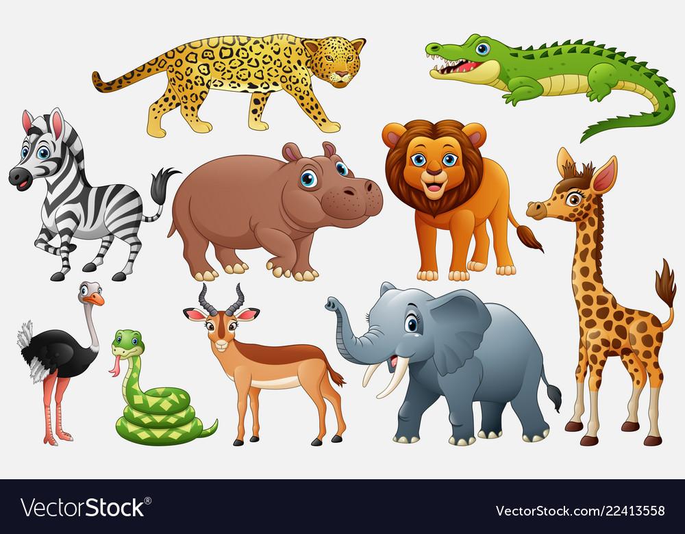 cartoon wild animals on