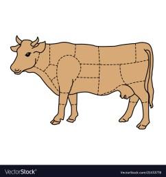 cartoon cow cattle meat diagram royalty free vector image diagram of cow cartoon cow cattle meat [ 1000 x 1080 Pixel ]
