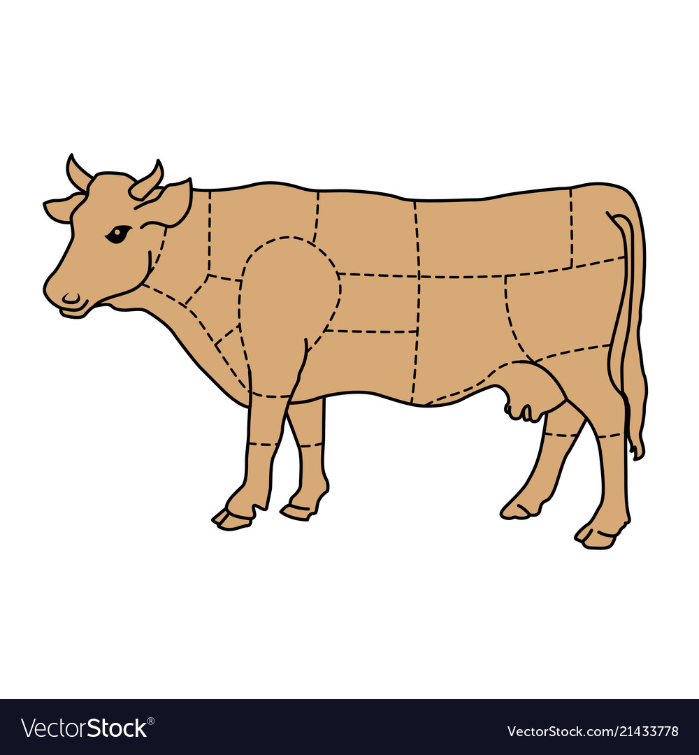 hight resolution of cartoon cow cattle meat diagram royalty free vector image diagram of cow cartoon cow cattle meat