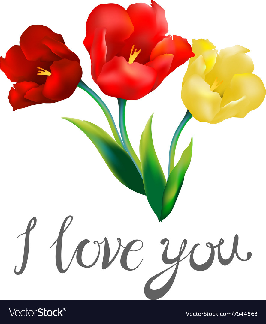 tulip flower design background