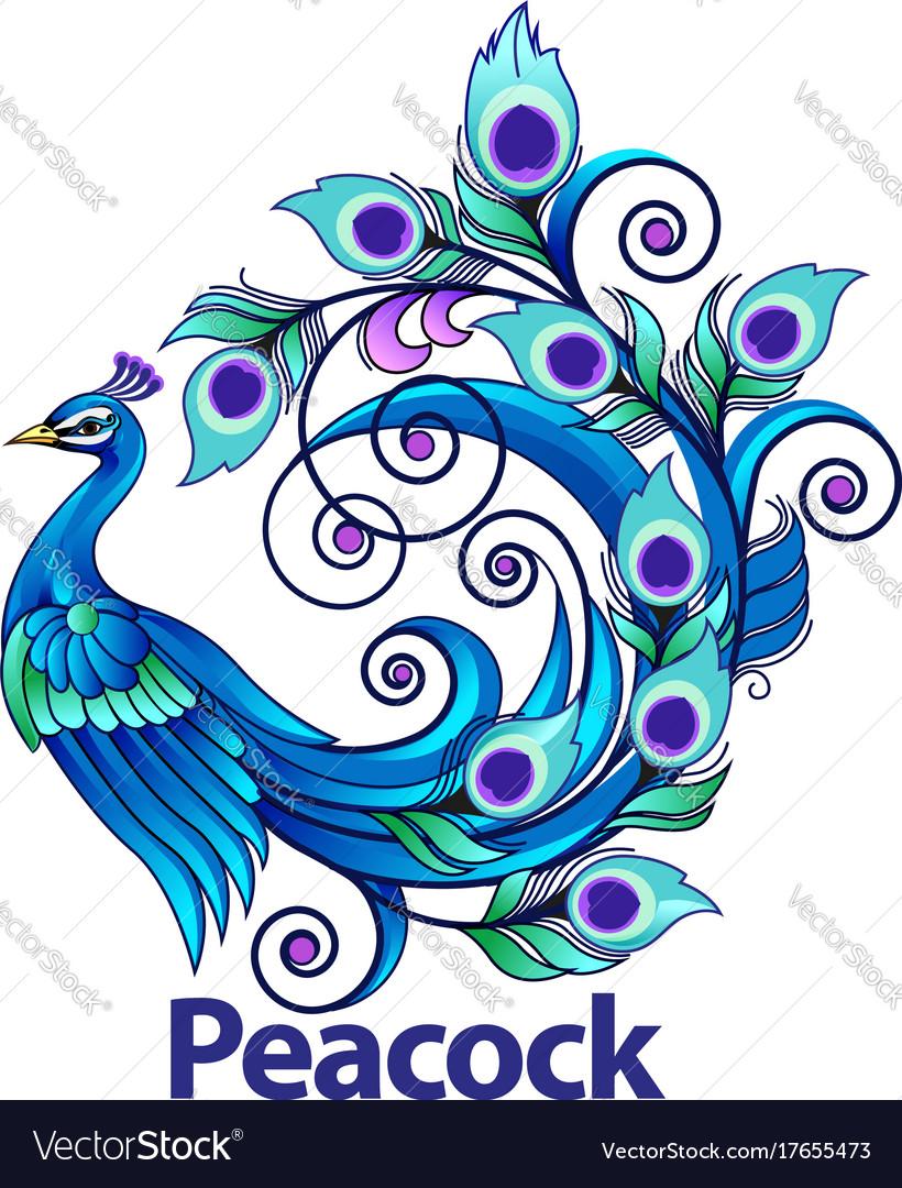 Peacock Royalty Free Vector Image - VectorStock
