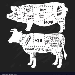Pig Cuts Diagram Horse Parts Of Simple Hand Drawn Pork And Beef Butchery Vector Image