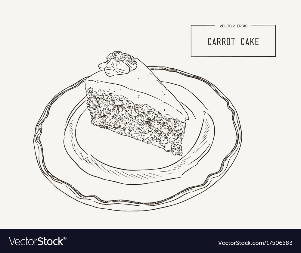 carrot plant diagram l14 plug wiring of cake great installation hand draw sketch royalty free vector image rh vectorstock com parts a