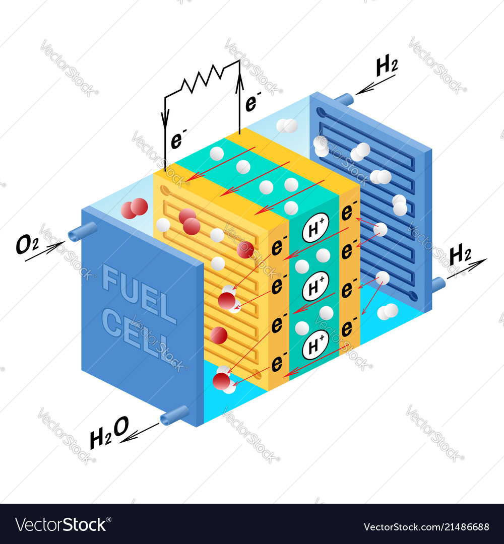 hight resolution of fuel cell diagram vector image