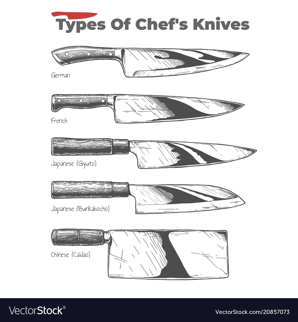 Types Of Kitchen Knives With Pictures  Wow Blog