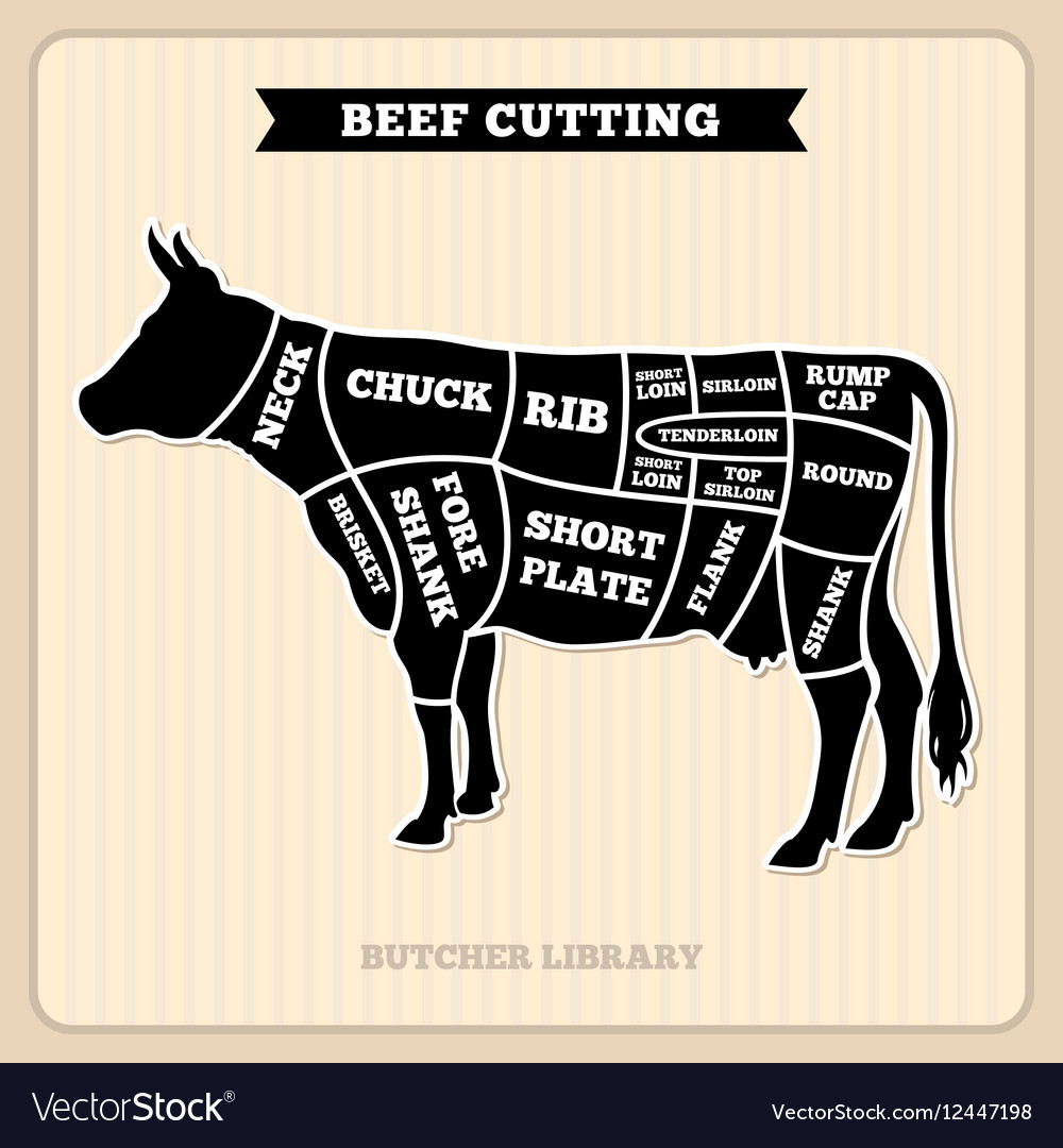 hight resolution of beef cow cuts butcher diagram royalty free vector image butchers cow diagram line artwork beef cow
