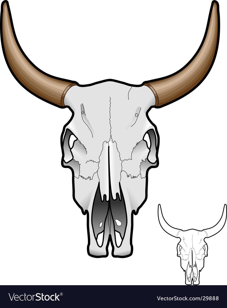 Bull Skull Clipart : skull, clipart, Skull, Royalty, Vector, Image, VectorStock