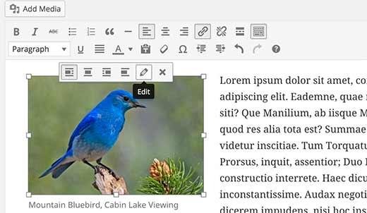 Chỉnh sửa hình ảnh trong WordPress
