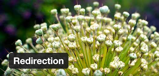 Redirection plugin for WordPress