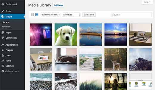 Media Library view in WordPress admin area