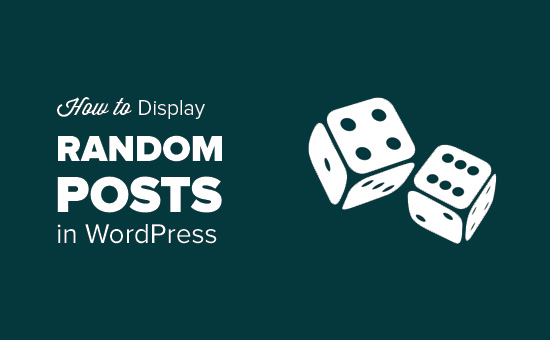 How to display random posts in WordPress