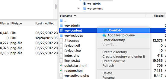 Download wp-content folder