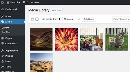 Media files uploaded via FTP to WordPress
