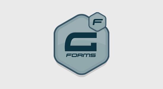 Gravity Forms plugin bentuk WordPress