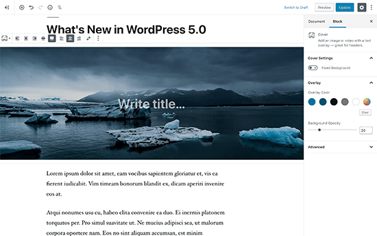 Новый редактор WordPress называется блок-редактор Гутенберга