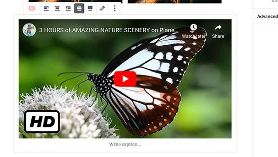 Een YouTube-video insluiten in WordPress